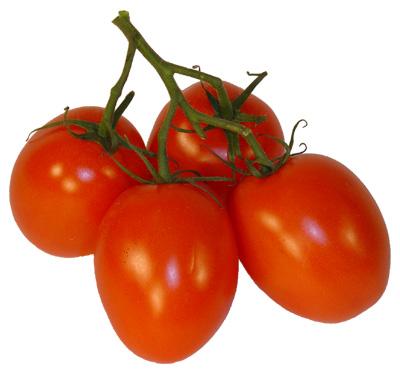 tomaten roma fruits friends. Black Bedroom Furniture Sets. Home Design Ideas