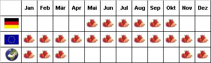 Erdbeere beschreibung